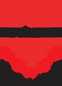 FIREX OPT 1